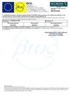 DocumentoGiustificativo_pag_due